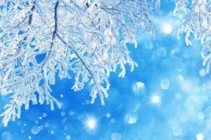 snow, Bokeh, Twigs, Frost, Sparkles