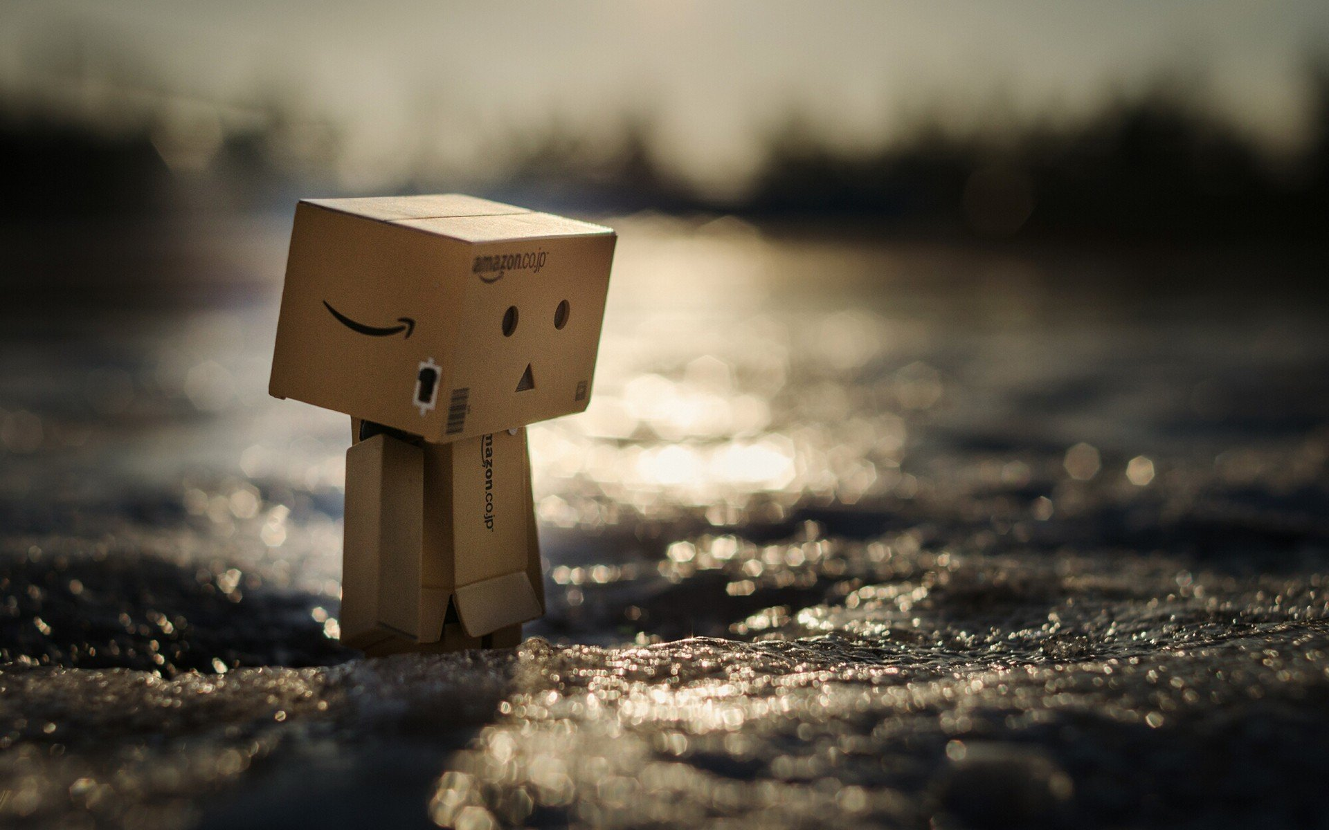Danbo Hd Wallpapers Desktop And Mobile Images Amp Photos
