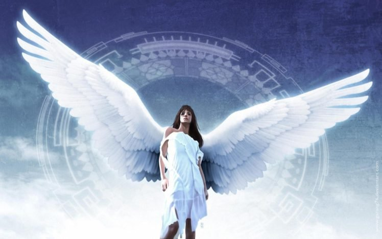 Angel Wings Hd Wallpapers Desktop And Mobile Images Photos