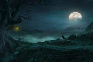 night, Moon