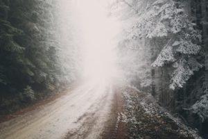 road, Snow, Mist