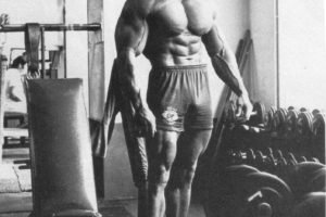 Arnold Schwarzenegger, Bodybuilding, Bodybuilder, Barbell, Dumbbells, Gyms, Exercising