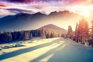 mountain, Trees