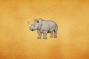 minimalism, Rhino
