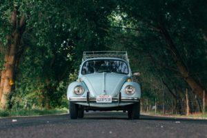 Volkswagen, Road, California, Trees, Volkswagen Beetle