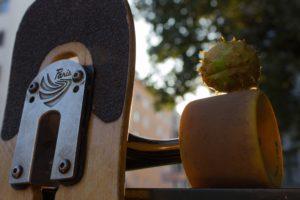 longboard, Fall, Paris, Longboarding, Chestnut