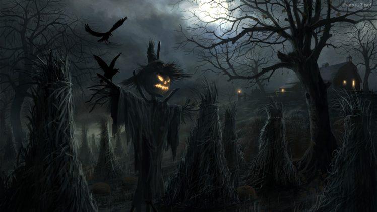 Jack O&039; Lantern, Halloween, Swellow HD Wallpaper Desktop Background