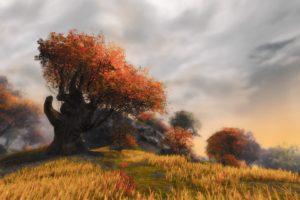 orange tree, Guildwars 2, Screen shot