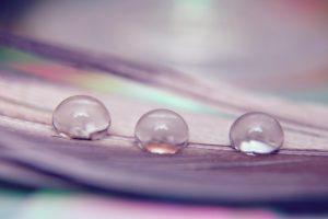 macro, Water drops