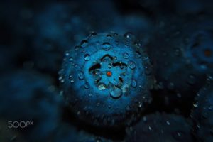 macro, Fruit, Water drops, Blueberries