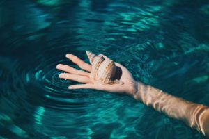 hands, Seashell, Water, Tropical, Clear water