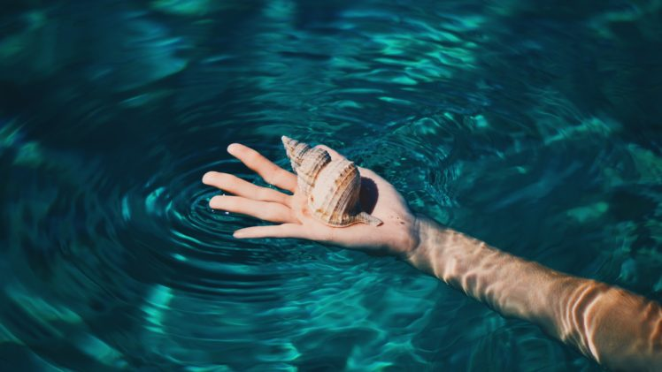 hands, Seashell, Water, Tropical, Clear water HD Wallpaper Desktop Background
