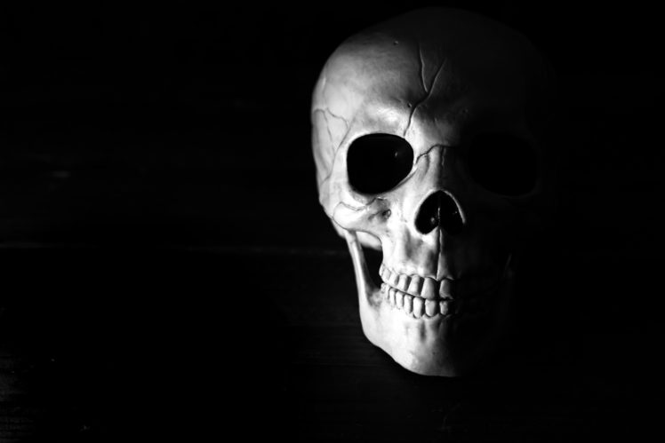 Skull Hd Wallpapers Desktop And Mobile Images Photos