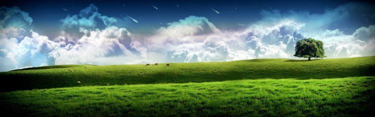 clouds, Grass, Hills, Cow, Panorama HD Wallpaper Desktop Background