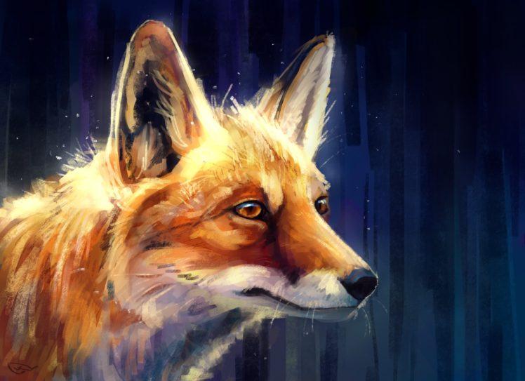 fox, Animals HD Wallpaper Desktop Background