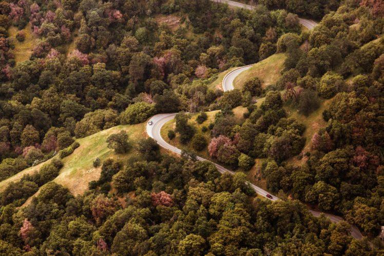 nature, Road, Trees HD Wallpaper Desktop Background