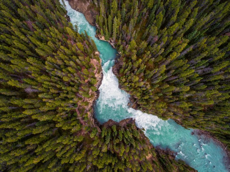 landscape, Trees, Forest, Nature, River, Water HD Wallpaper Desktop Background