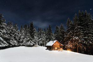 snow, Pine trees, Stars, Cabin