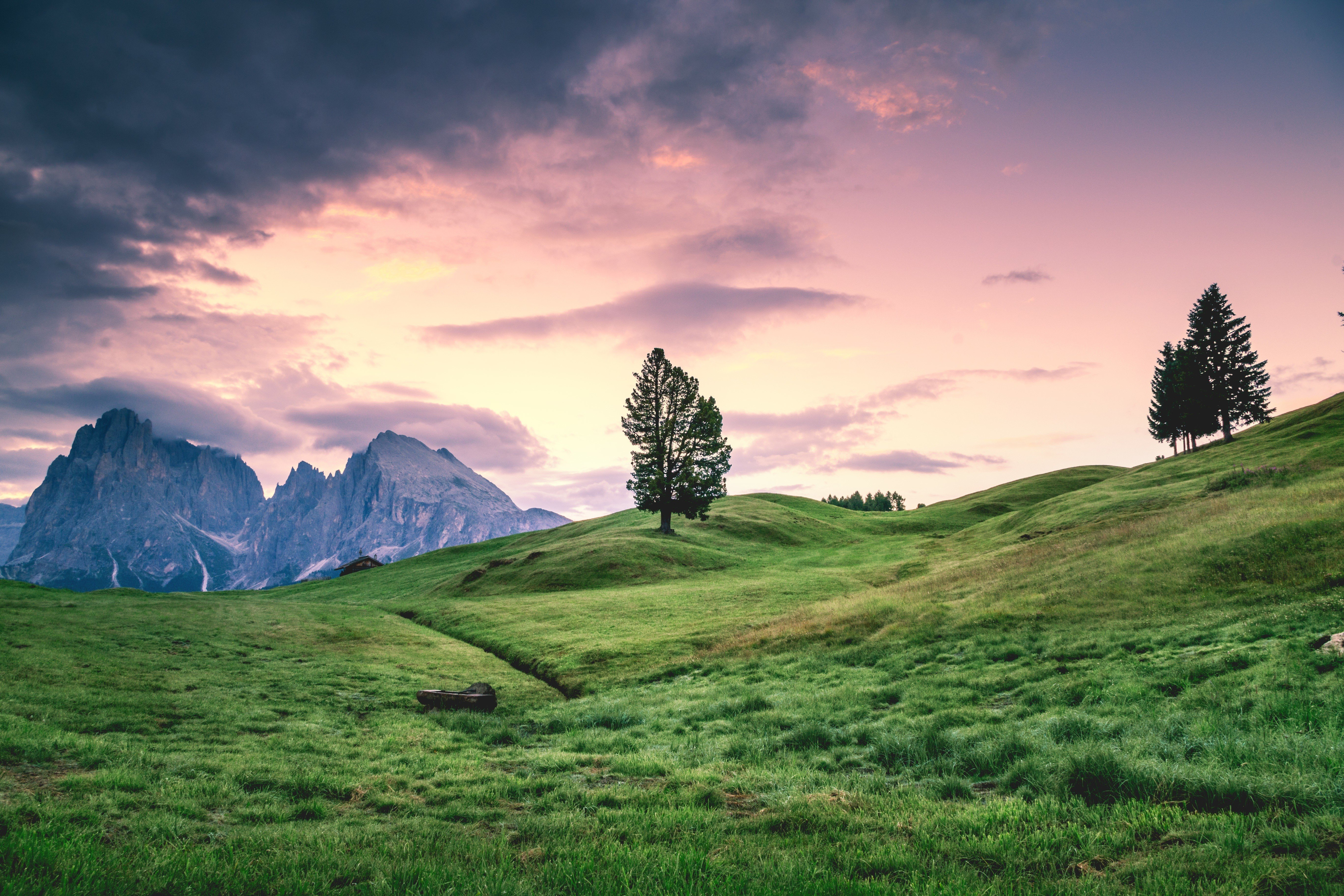 trees, Mountains, Sky, Field, Nature, Landscape Wallpaper