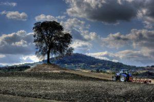 tractors, Field, Landscape
