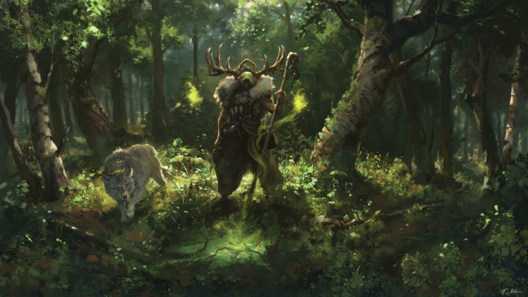 Forest Wolf Magic Sorcerer Antlers HD Wallpaper Desktop Background