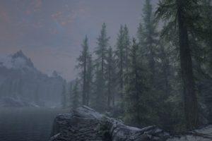 The Elder Scrolls V: Skyrim, Video games