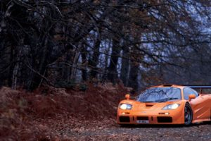 McLaren, McLaren F1, Orange color, Trees, Fall, Supercars, Car, Sports car, Leaves, Plants,   landscape