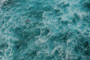 nature, Water, Swimming, Sea