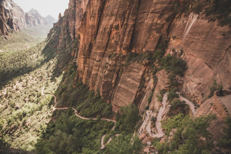 Nature Trees Zion National Park Landscape Hd Wallpapers