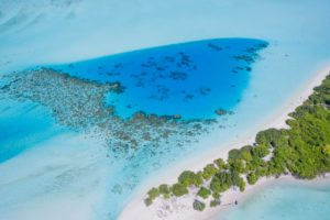 nature, Water, Trees, Aerial view, Sea