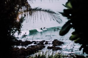 surfers, Nature, Water, Trees