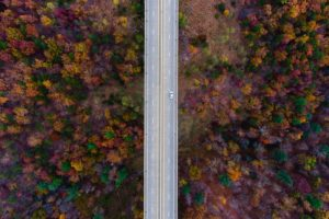 nature, Road, Trees, Fall, Car