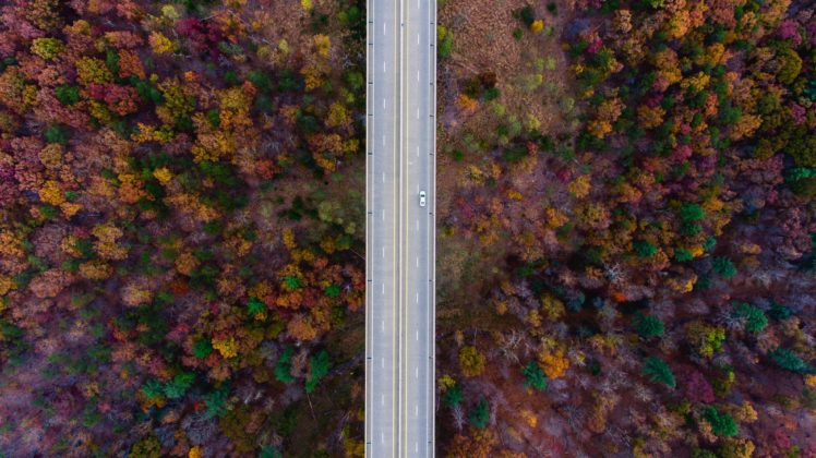 nature, Road, Trees, Fall, Car HD Wallpaper Desktop Background