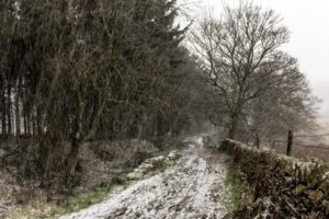 snow, Winter, Landscape, Road