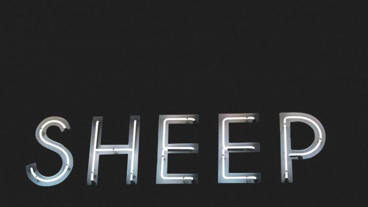 neon, Neon sign, Sheep HD Wallpaper Desktop Background