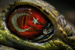 eyes, Turkey