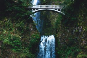 nature, Water, Bridge, Trees, Waterfall