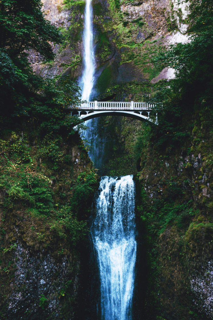 Must see Wallpaper Desktop Background Waterfall - 461188-nature-water-bridge-trees-waterfall-748x1122  Pic_934765 .jpg