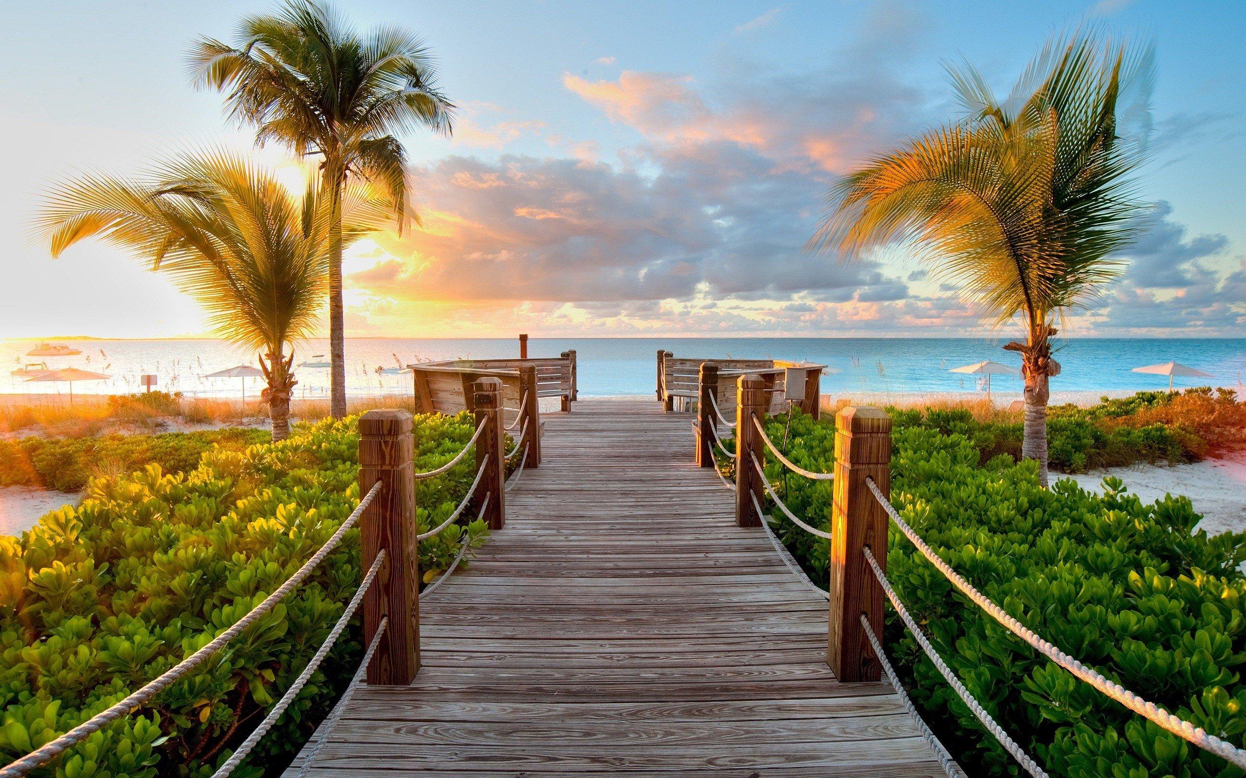 sunset, Path, Island, Beach, Palm trees
