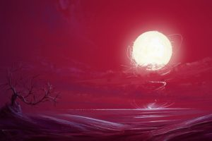 illustration, Fantasy art, Sunset, Bonsai, Sun, Red, Artwork