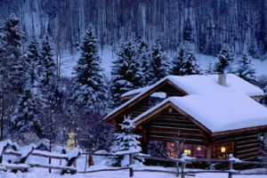 Christmas, Snow, Pine trees, Cabin