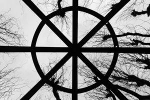 monochrome, Silhouette, Trees