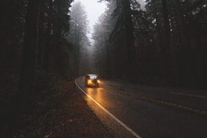photography, Landscape, Pine trees, Car, Road