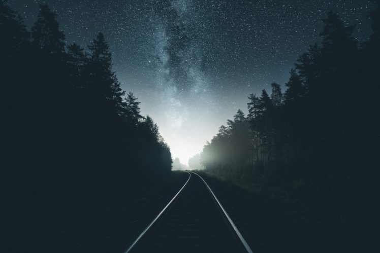 Photography Railway Night Forest HD Wallpaper Desktop Background