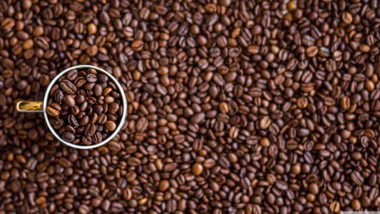 coffee, Macro, Cup, Closeup, Blurred HD Wallpaper Desktop Background