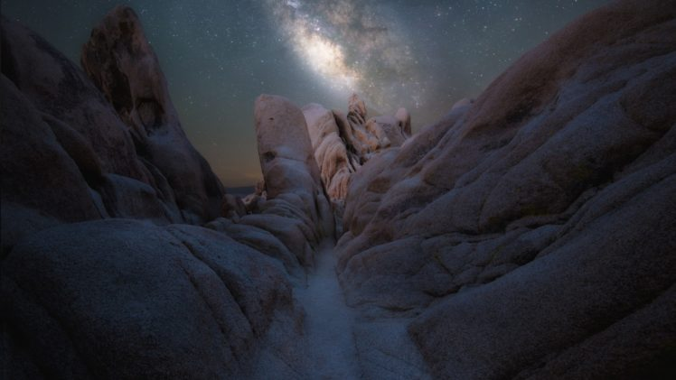 night, Joshua Tree National Park, Rock, Nature HD Wallpaper Desktop Background