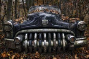 leaves, Car, Vehicle