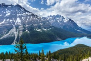 lake, Mountains, Trees, Sky, Canada, Peyto Lake, Banff National Park, Blue