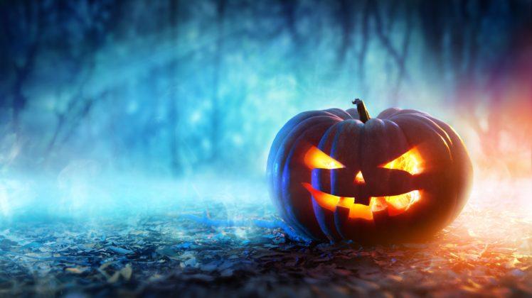 Pumpkin Halloween Depth Of Field Digital Art Hd Wallpapers Desktop And Mobile Images Photos