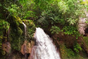 nature, Landscape, Philippines, Waterfall, Plants